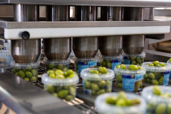 Miraglia Olive - Stabilimento